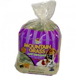 AMERICAN PET DINER MOUNTAIN GRASS - 24oz